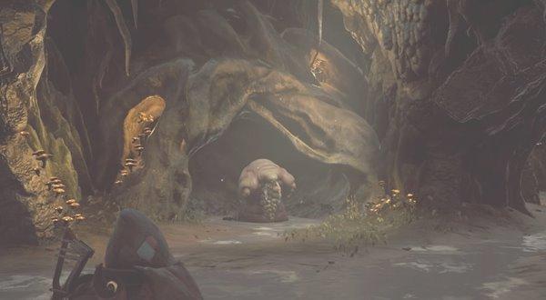 マーゴッシュの巣穴
